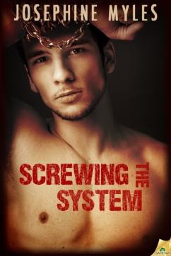 ScrewingTheSystem