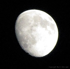 Moon_WCfilter